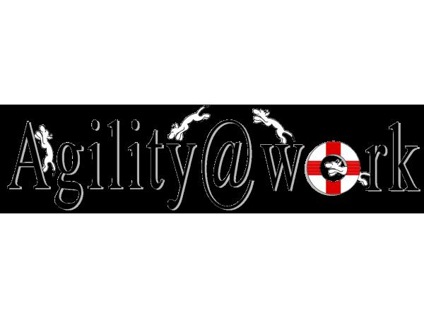 Agility@Work